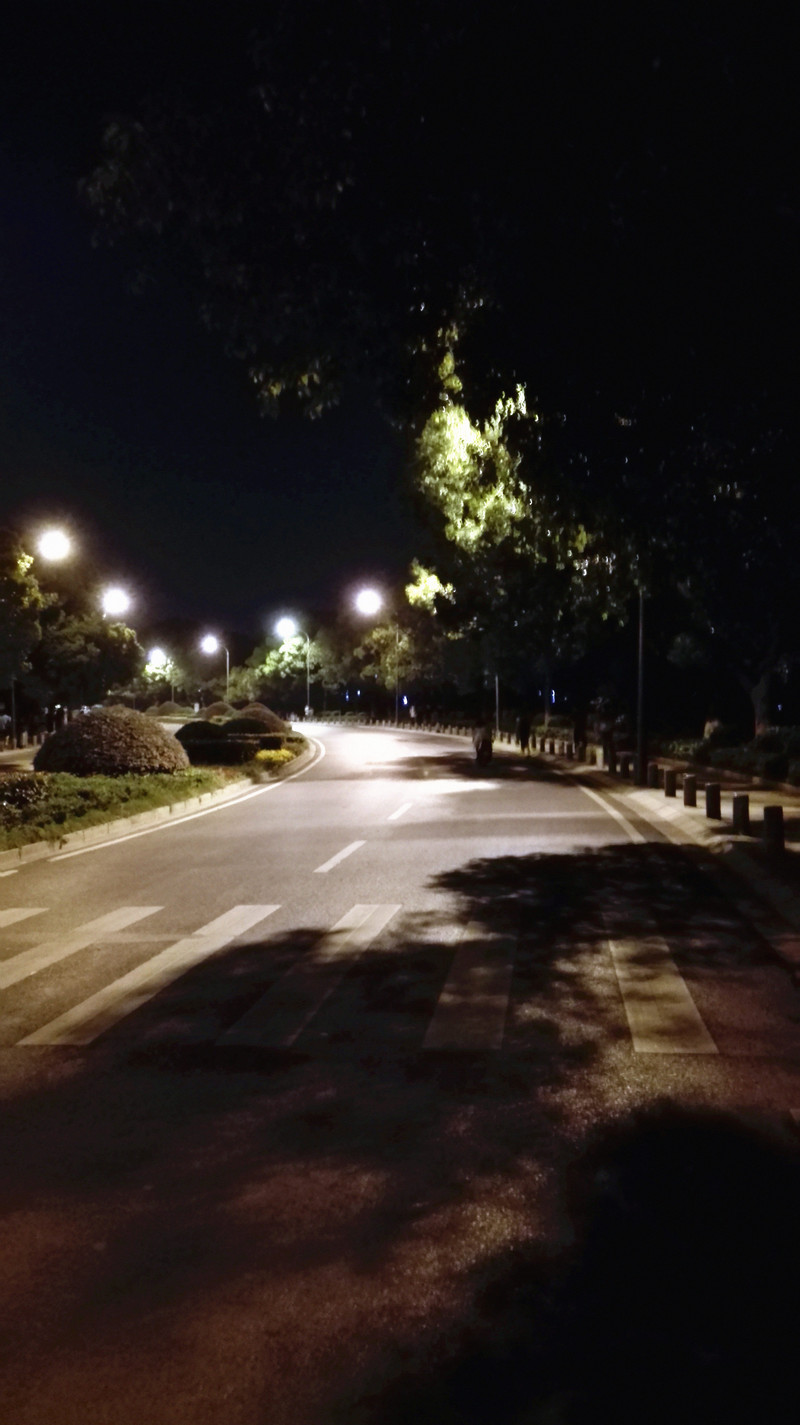 人文和繁华的交叉路口:P8青春版陪你夜游武大