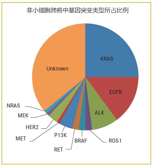 肺癌药易瑞沙,9291,2992,克唑替尼,045,4002,AP26113换药总结