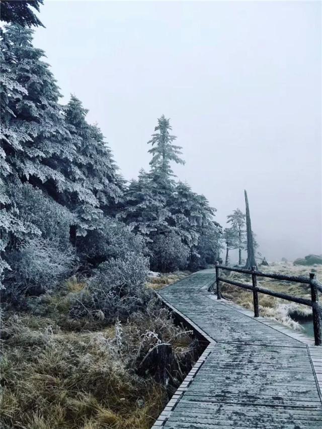 美!凉山螺髻山景区迎来首场冬雪 景区宛如仙境
