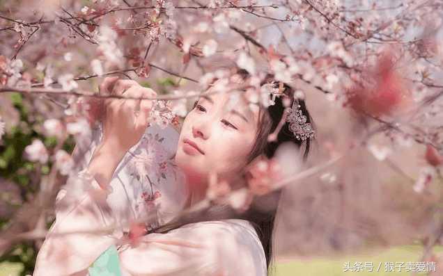 一花一世界,哪一朵花才是你的真爱?