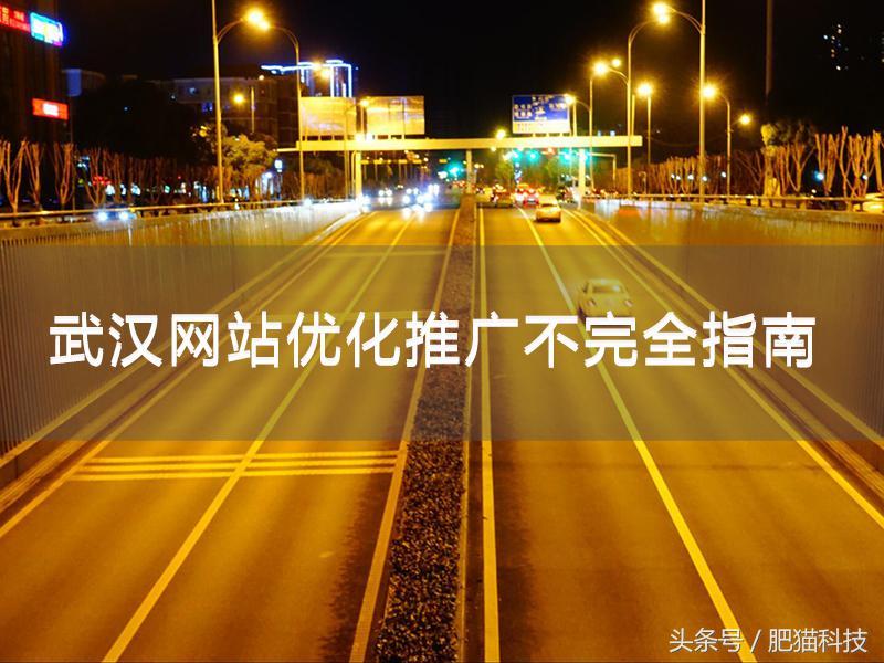 武汉网站优化推广不完全指南