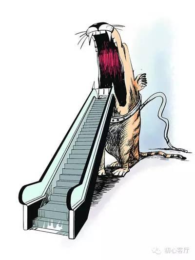 """热点解析:女子""""电梯焦虑""""的心理解读"""