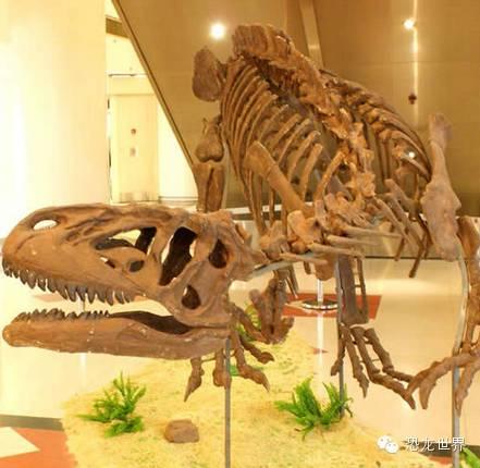 异特龙:聪明的大型侏罗纪食肉恐龙