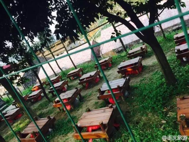 重庆最洋盘的农家乐,好吃好耍整安逸!