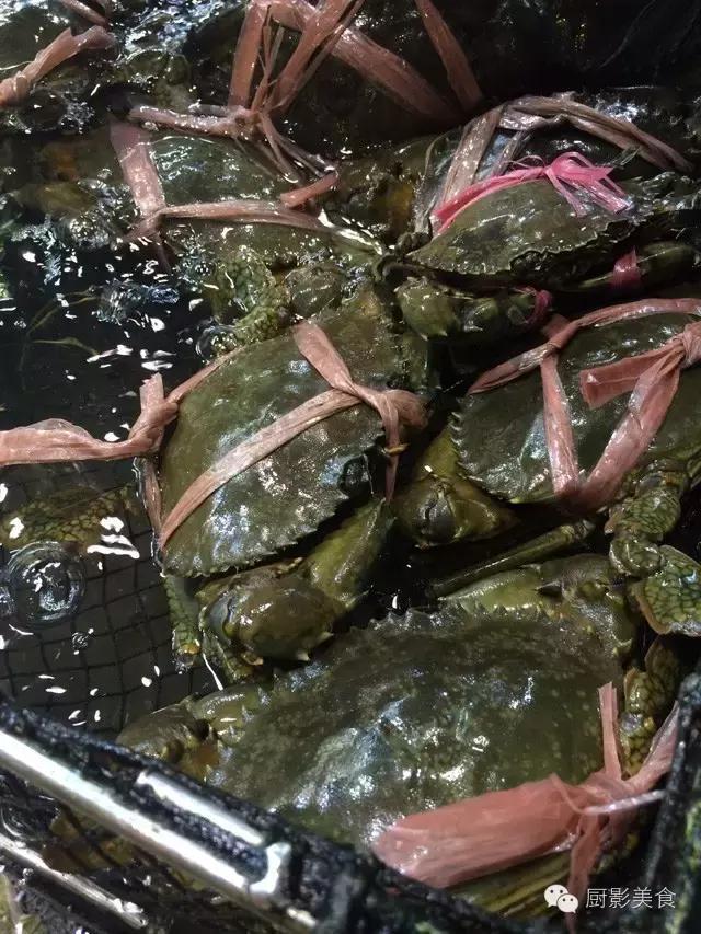香港西贡海鲜市场,珍稀野生鱼类宝典! 食材宝典 第47张