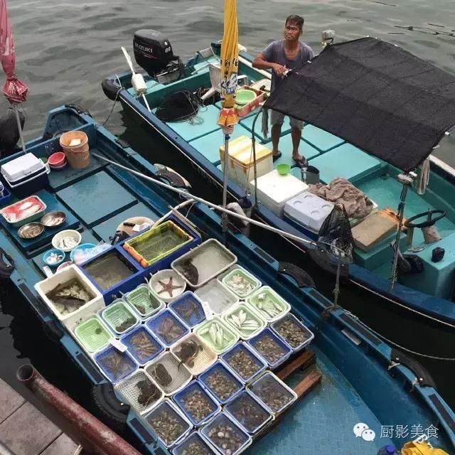 香港西贡海鲜市场,珍稀野生鱼类宝典! 食材宝典 第4张