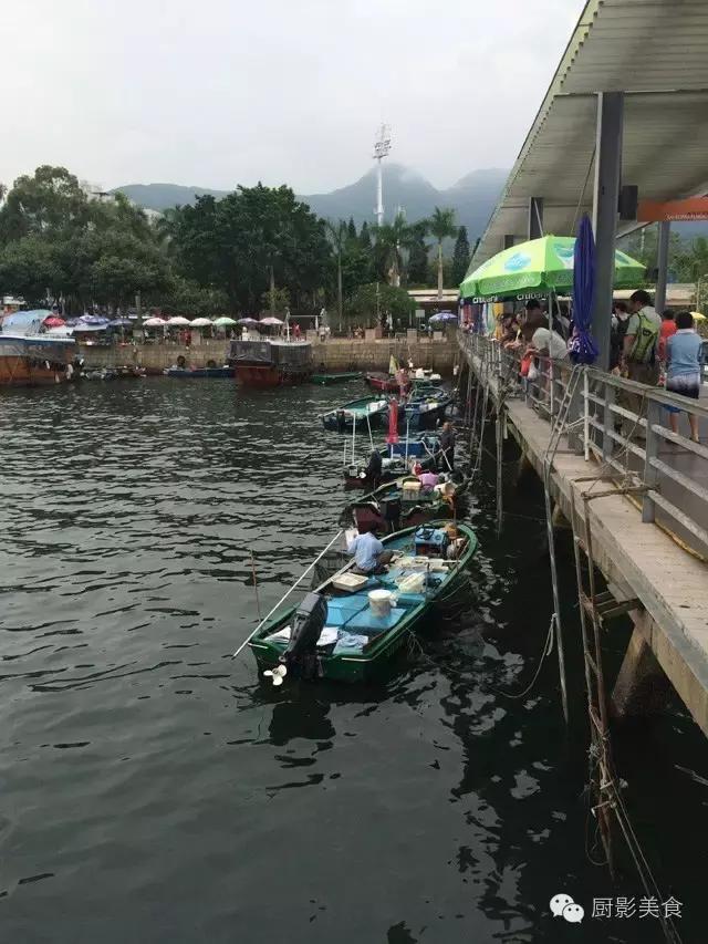 香港西贡海鲜市场,珍稀野生鱼类宝典! 食材宝典 第2张