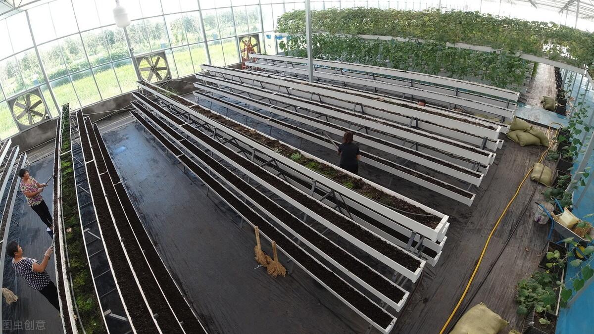 如何应对北方地区连栋温室大棚最大的短板,这几种方法必须了解