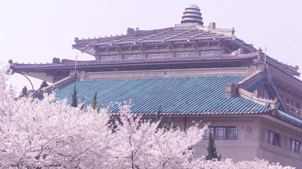 张定宇邀请大家来武汉赏樱,相约春天赏樱花,我在武汉东湖等你