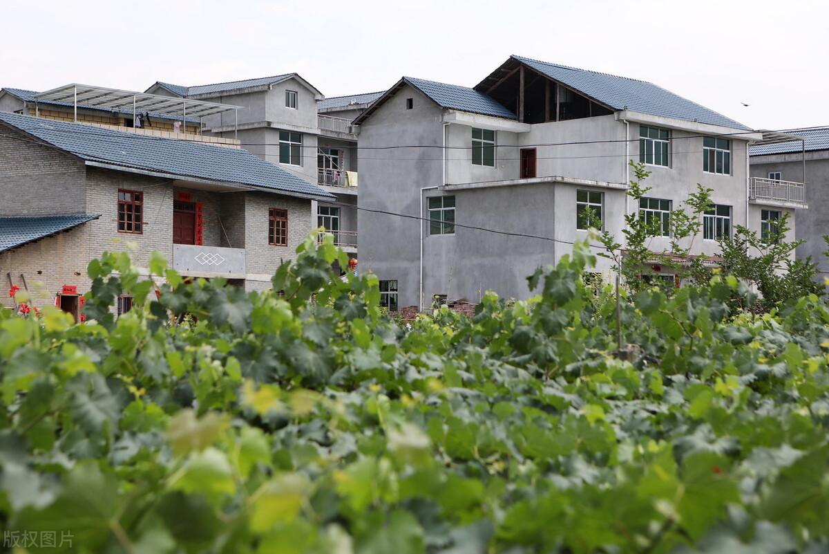 农村承包地为什么一亩400都没人租了?