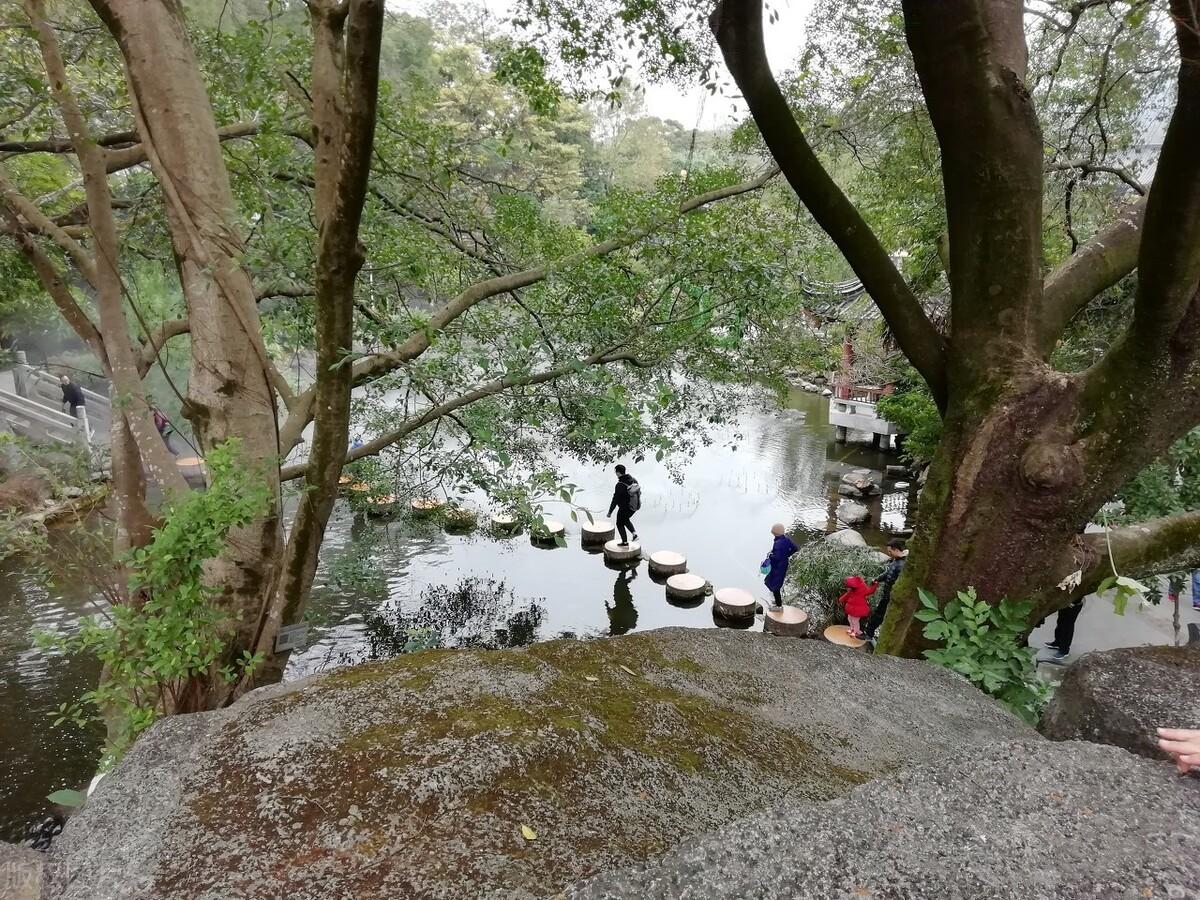 """广东遗弃景区意外走红,无人看管却游客不绝,被称""""惠州生态园"""""""