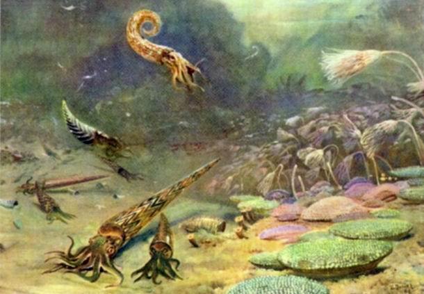 生命的起源是怎样的?达尔文的进化论还可信吗?
