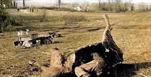 狙击手如何伪装自己?有些钻进死马尸体里
