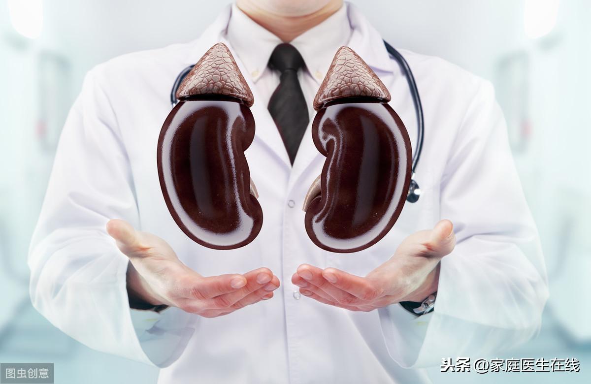 如何呵护肾脏?这7个养肾方法,不妨试一试