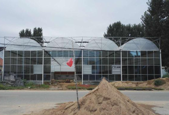 连栋温室大棚整体结构设计及建造注意事项