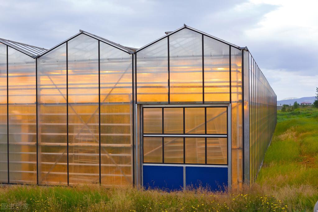 温室大棚后期维护使用注意的事项,大棚使用事项指南