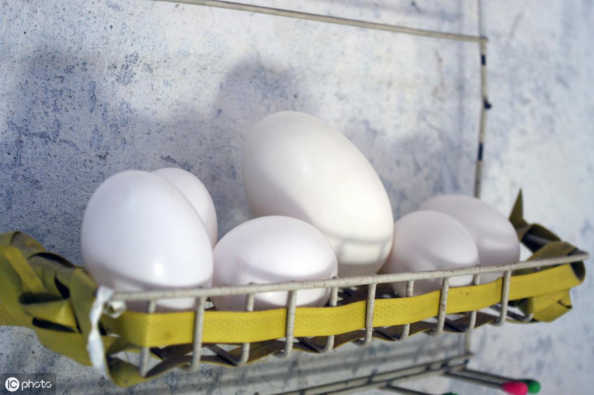 鹅蛋怎么做好吃法大全(鹅蛋怎么做好吃且是有营养的)