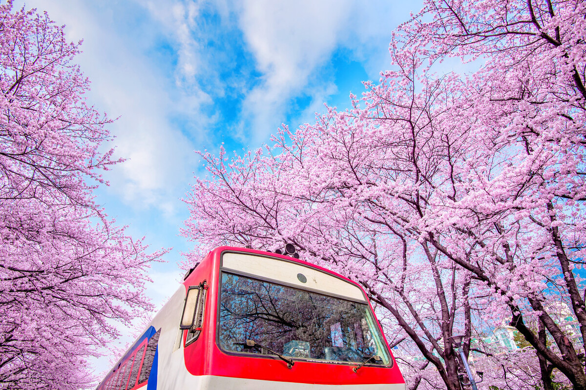 换季小常识:春季健康要注意这五点
