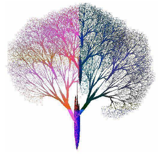 宇宙真的是一個分形結構嗎?宇宙學原理到底暗示著怎樣的祕密