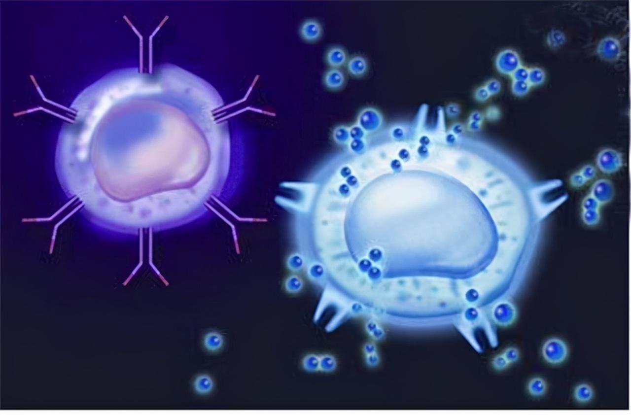 巨大胶质瘤压迫脑干如何长期生存?能否成功全切?