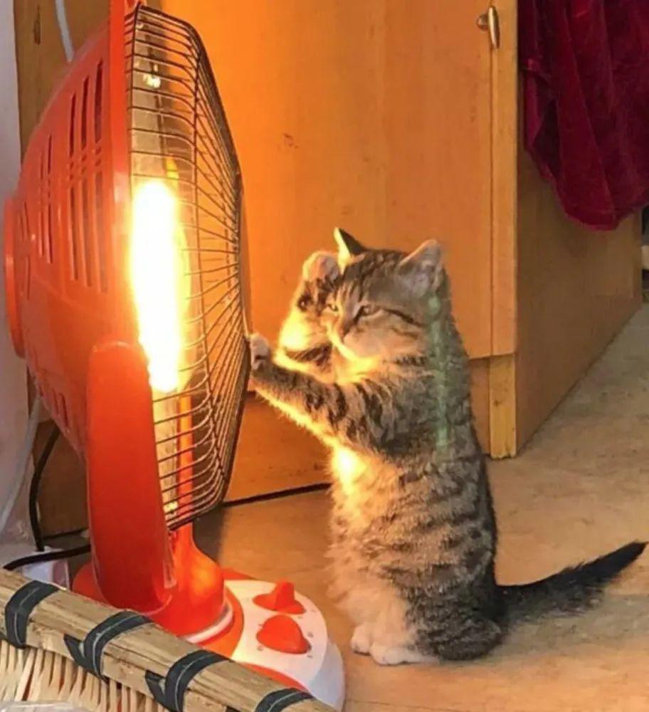 没暖气被冷出冻疮,贴暖宝宝成三级灼伤,南方的小伙伴有多难?