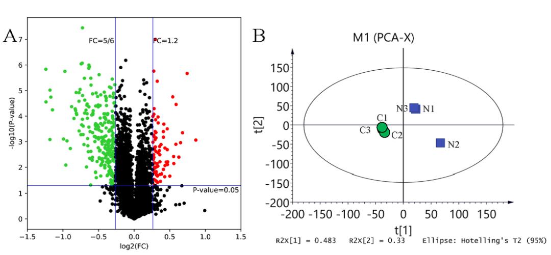 两篇连发~转录组学+蛋白质组学对水生生物中纳米塑料毒性机理研究