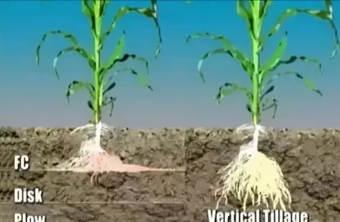 了解土壤的八字方针