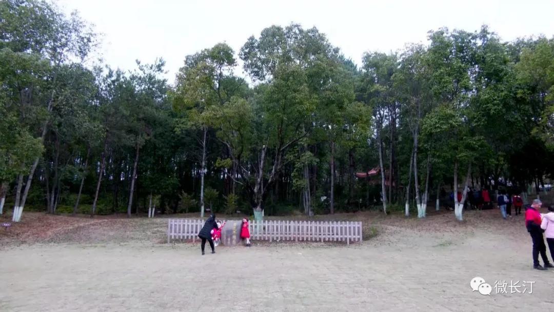 """福建长汀:科教园里春光艳 """"户外课堂""""长知识"""