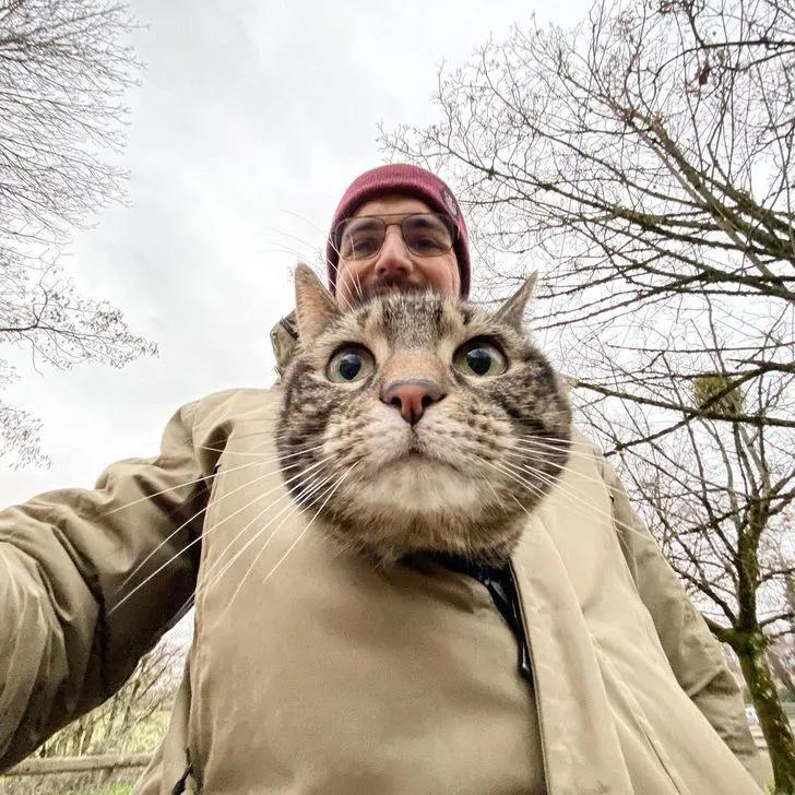 猫咪喜欢兜风,于是主人为它做了各种各样的头盔