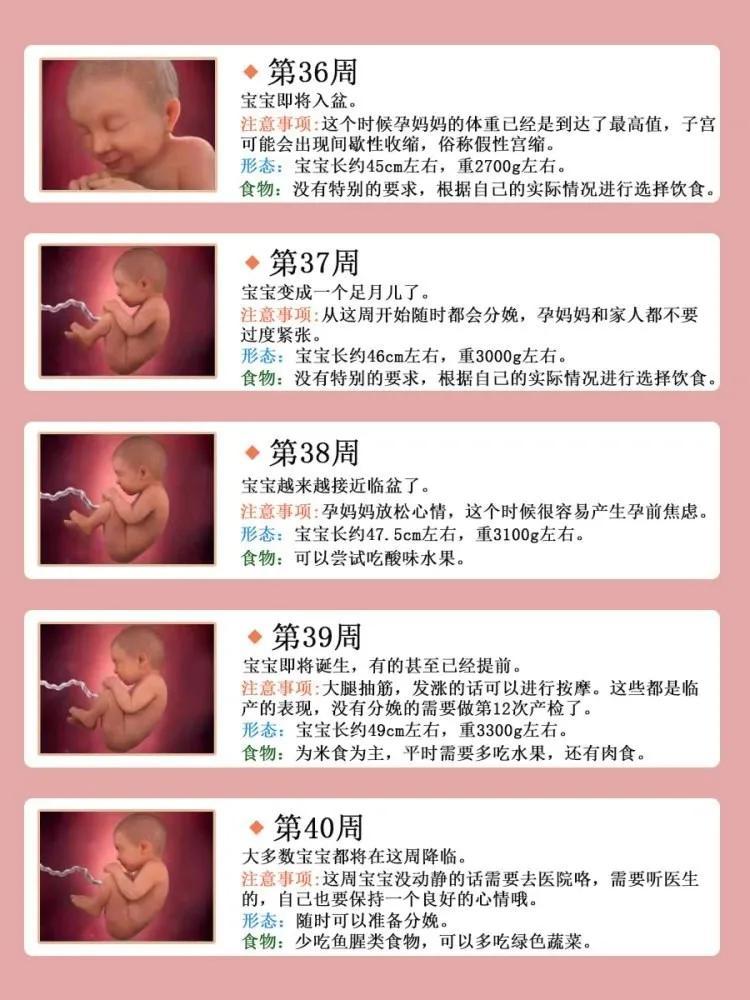 孕期营养补充