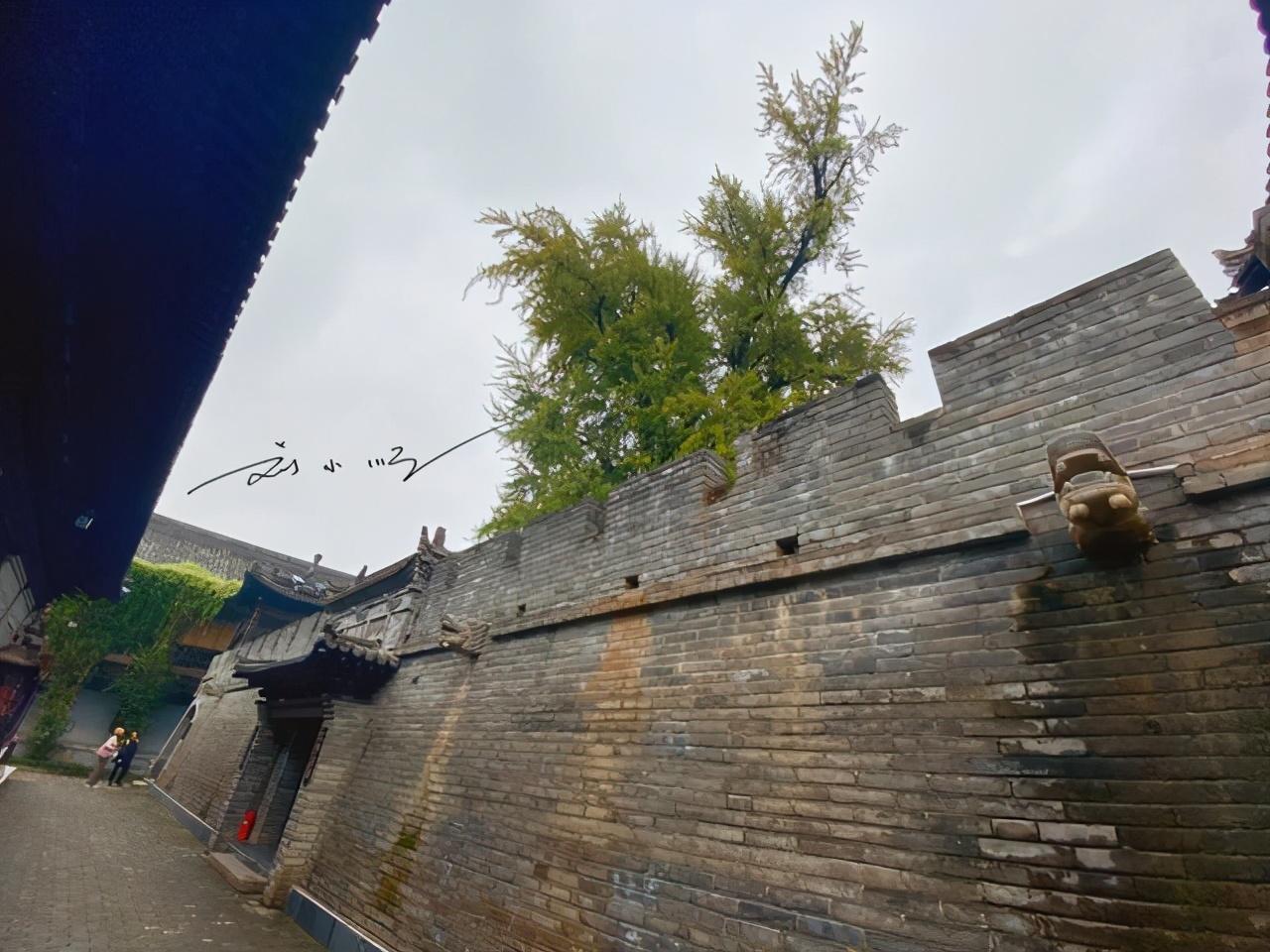 """西安有一座偏远的寺庙,历史已超千年,因为一棵古树成为""""网红"""""""