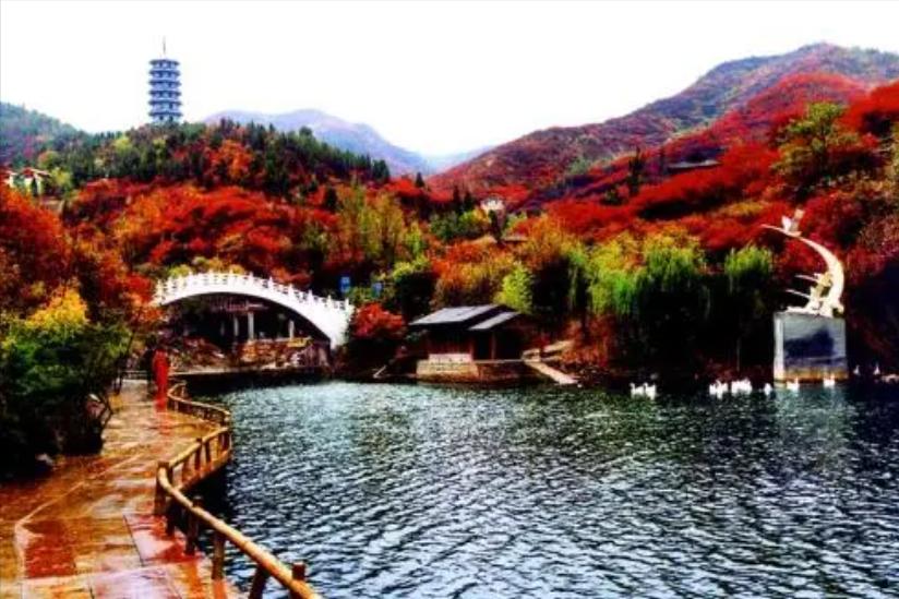 """""""中国旅游日""""将至,山东一景区推出特别活动,所有游客5折优惠"""
