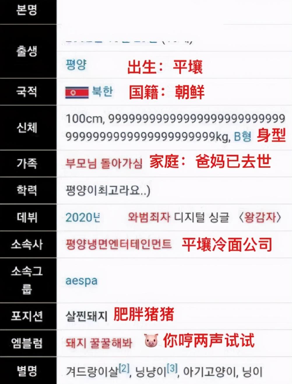 aespa宁艺卓的个人资料被韩国网友篡改:只因为她来自中国