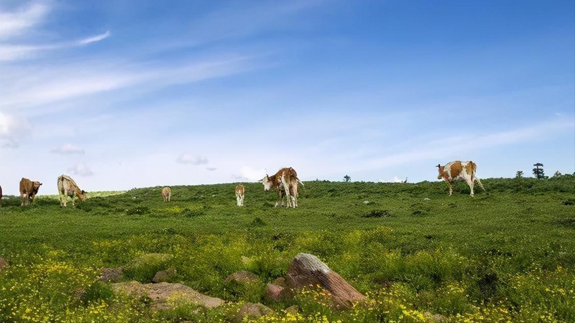 """山西一景区,被称为""""北方的香格里拉"""",景点各具特色"""