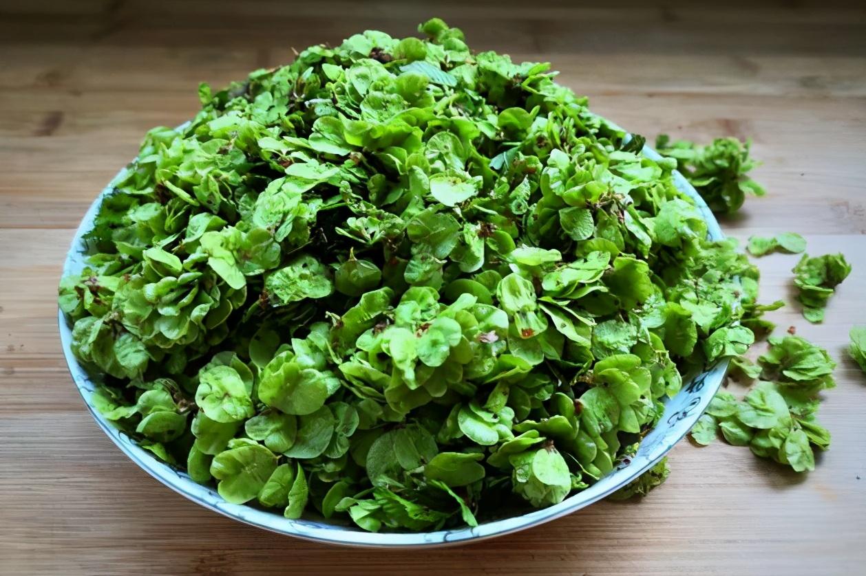 这野菜季节性强,遇到别错过,不含草酸,铁含量高,没吃过要抓紧 美食做法 第4张