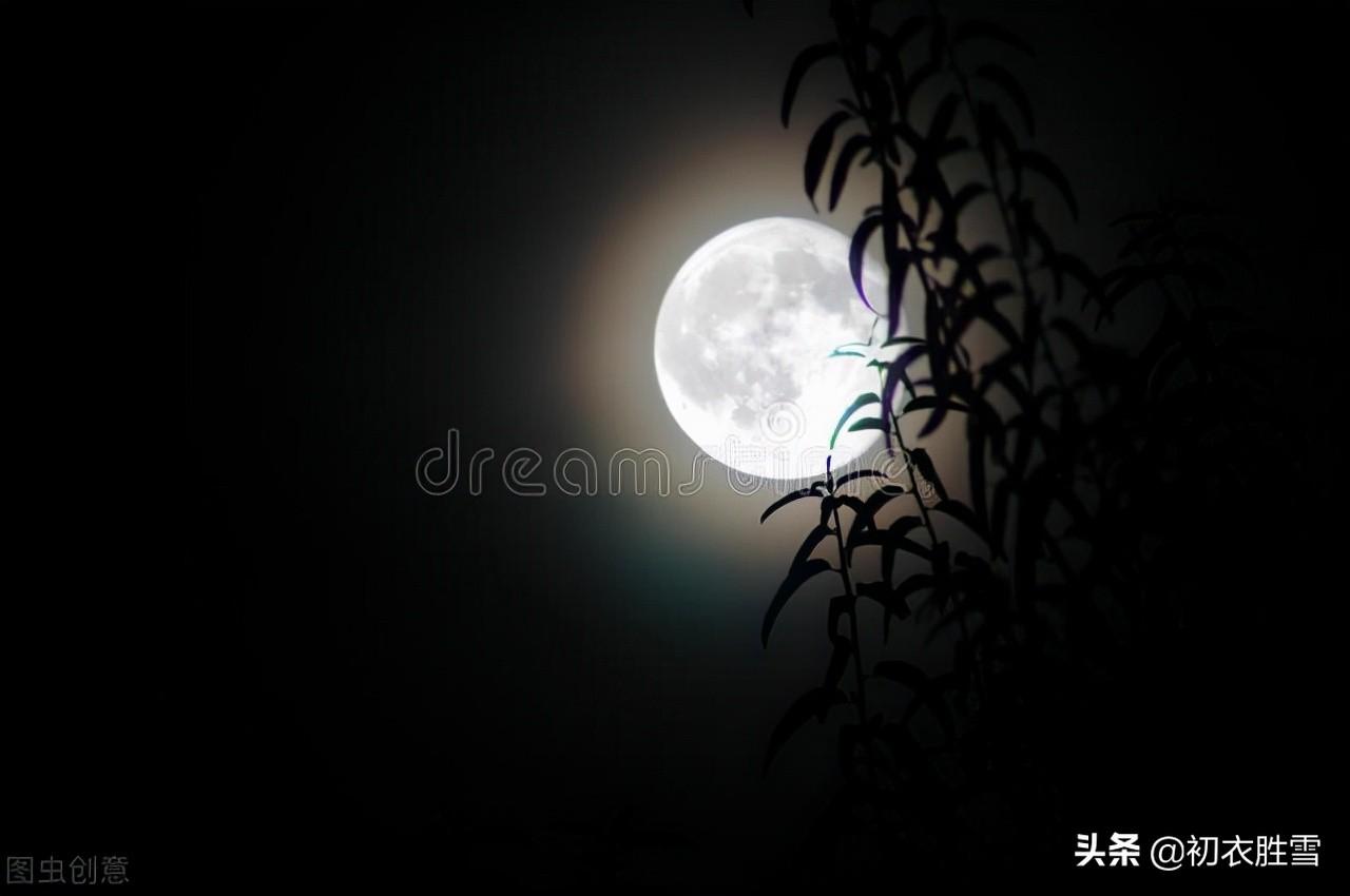 中国上古诗歌明月诗五首,夜光何德,月出皎兮
