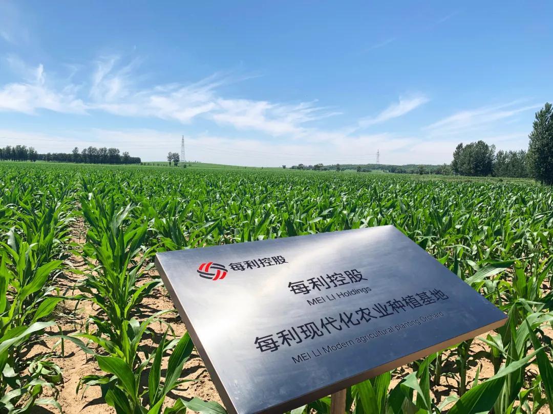 """农业大机遇!这些政策落地,将为农业带来""""真金白银""""上的改变"""