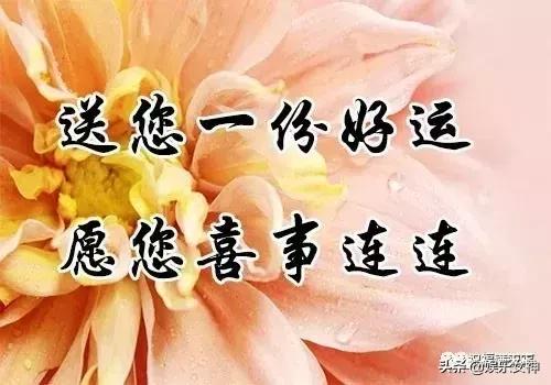 今日重阳节,致天下父母!愿父母身体健康,幸福快乐