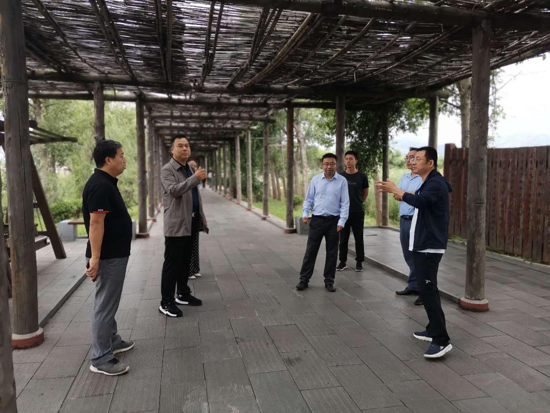 渭南市文旅局赴合督导检查汛期文物旅游安全及气象灾害防御工作