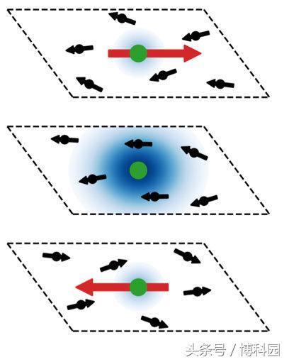 在量子材料中发现自组装可调接口