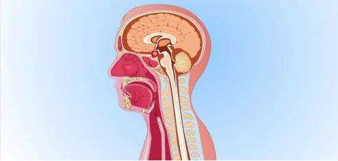 发现颅咽管瘤如何诊治