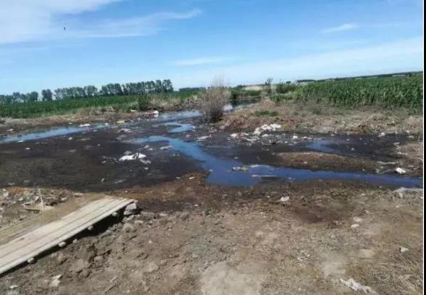 黑鹤城省喂养业环境污染管控困乏,技术性骨干公司自然环境违反规定违反规定比较严重