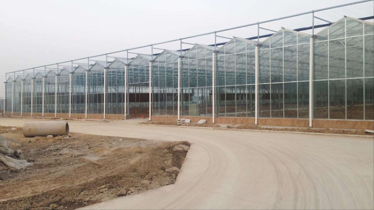 采用Venlo(文洛)型玻璃温室有什么优点,您了解吗?