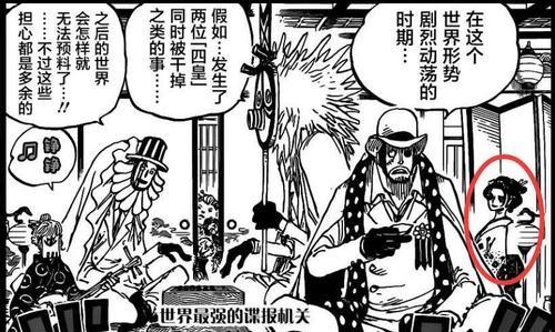 海賊王:羅賓如今身價暴漲,擁有多重身份,她將如何應對復雜局面