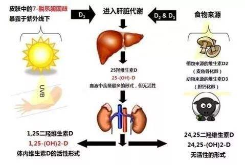 带孩子晒太阳应掌握6个技巧,晒得不对,反而可能有害无益