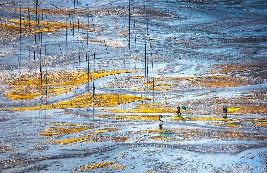 被誉为中国最美的滩涂,福建宁德的霞浦县,风情万种犹如美丽油画