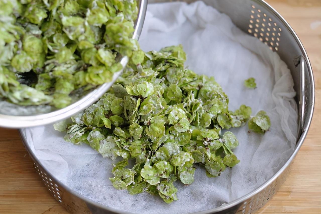 这野菜季节性强,遇到别错过,不含草酸,铁含量高,没吃过要抓紧 美食做法 第6张