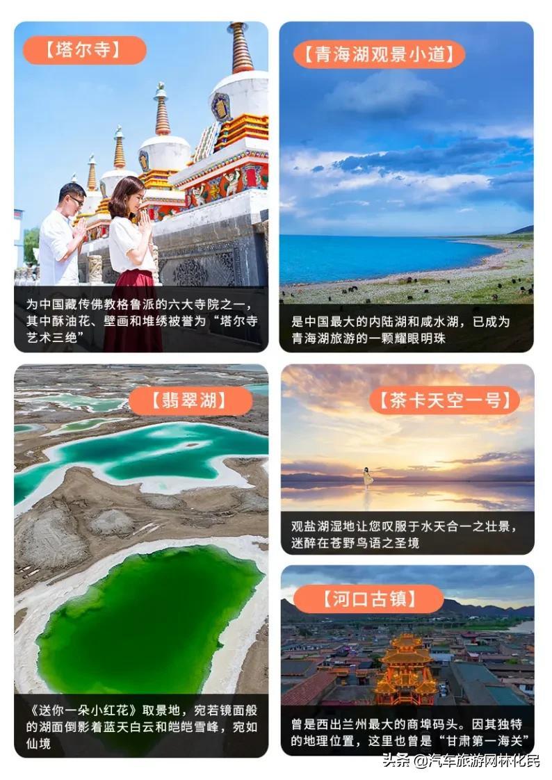 临沂「惠游丝路」门源/张掖/敦煌/德令哈/茶卡/青海湖/西宁8日游