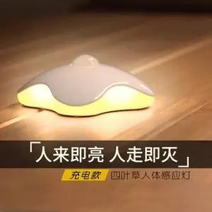 权威认证中国十大品牌感应灯