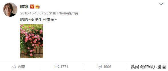 陈坤连续11年为周迅庆生,真·称职的哥哥,网友直呼神仙友情
